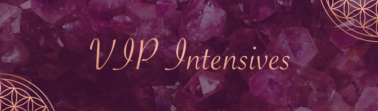 Vip_Intensives_cover